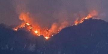 Incendio consume el cerro del Barrio de Santo Domingo, Tepoztlán 22