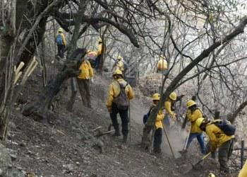 Controlan al 90% el incendio en Tepoztlán, Morelos 8