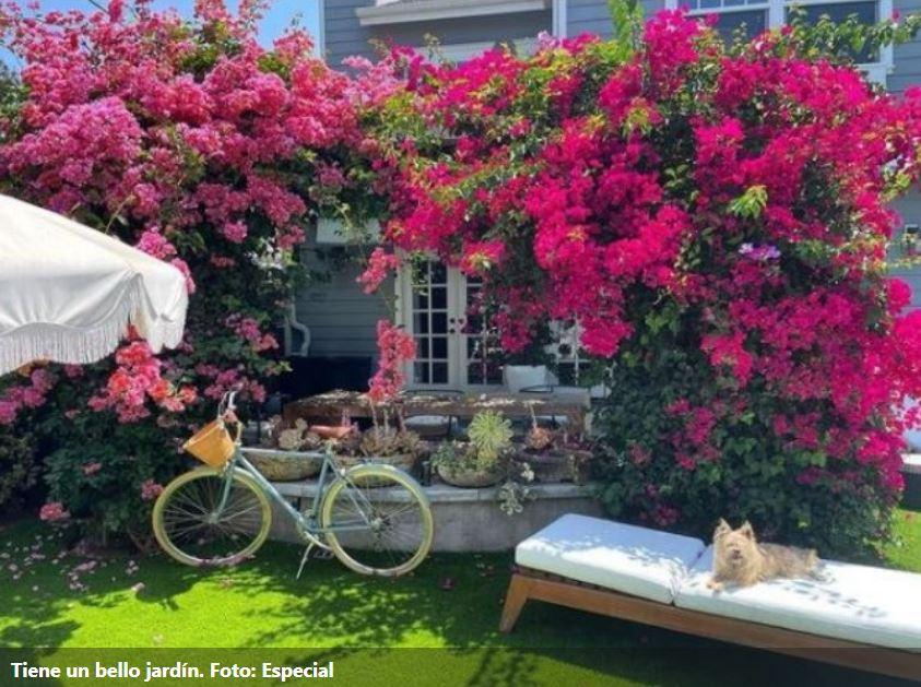 Eiza González presume su lujosa casa con jardín de bugambilias 2