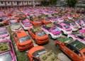 """Choferes de taxis crearon """"minijardines"""" en los techos de sus vehículos como acto de protesta 15"""