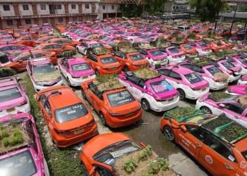 """Choferes de taxis crearon """"minijardines"""" en los techos de sus vehículos como acto de protesta 5"""