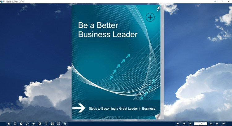 be a better business leader book