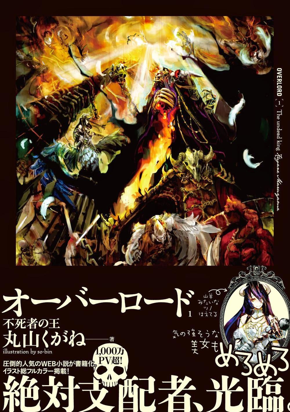 Amazon.com: Overlord, Vol. 12 (light novel): The Paladin