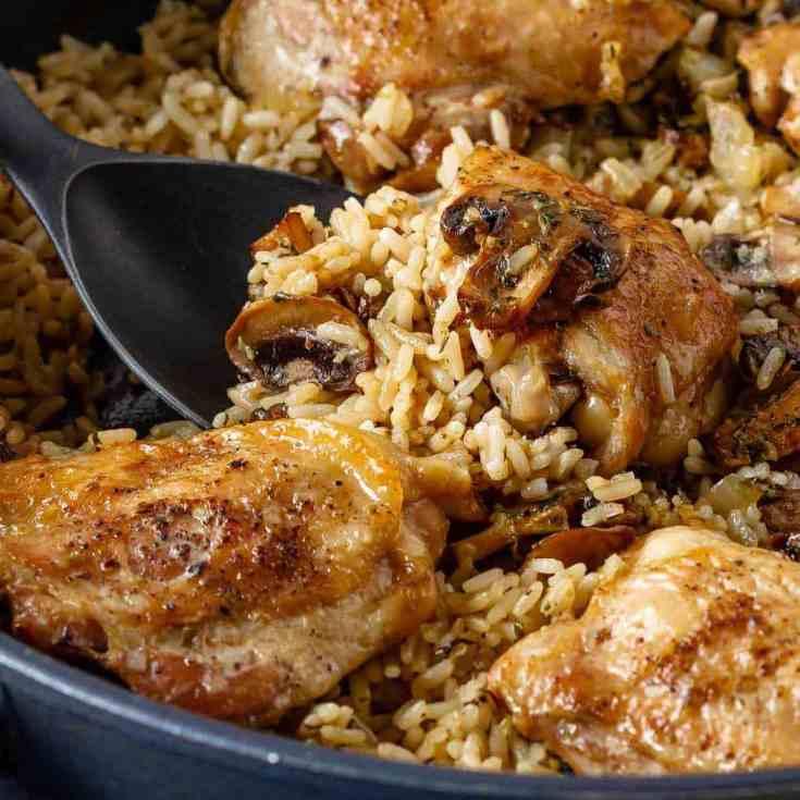 Mushroom chicken and rice