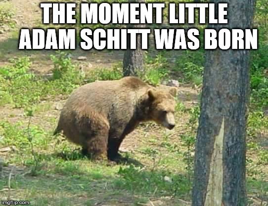 Adam Schitt Was Born