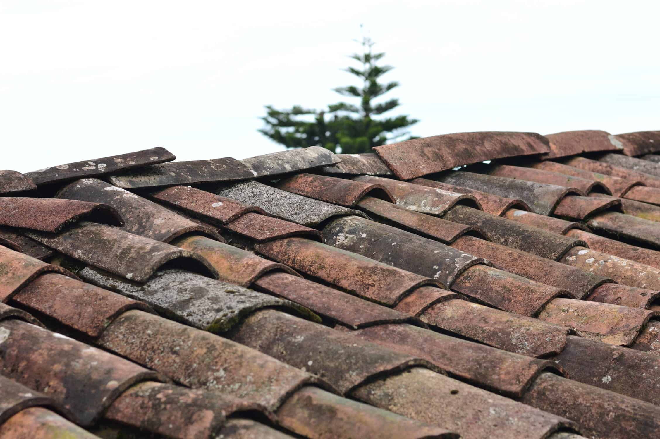 4 Ways a Leaking Roof Can Damage Your Home's Interior