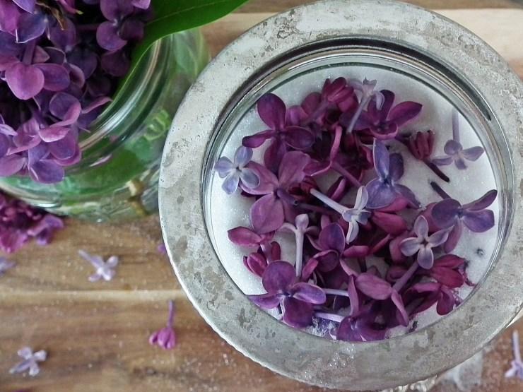 syrinsukker_syrin_sukker_spiseligeblomster_spiselig_blomst_baking_norgesglass_oppskrift_bakemagi_4
