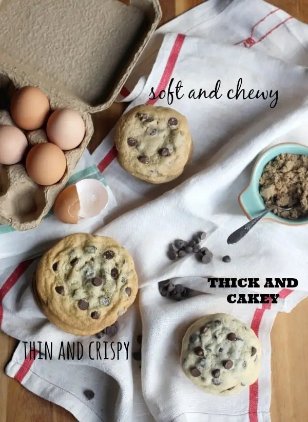 Thick and Cakey Chocolate Chip Cookies- Baker Bettie