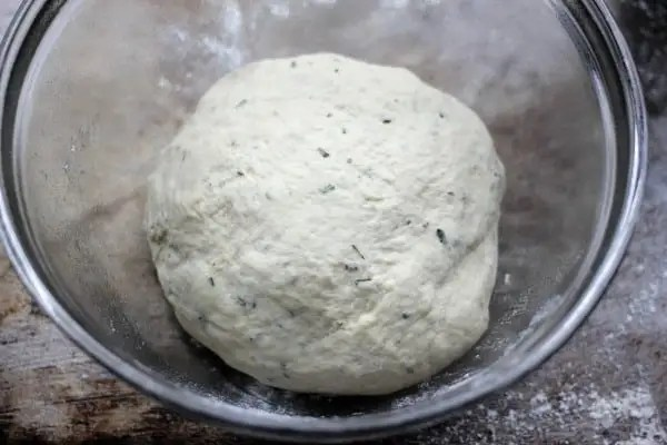 dough-ready-to-rise