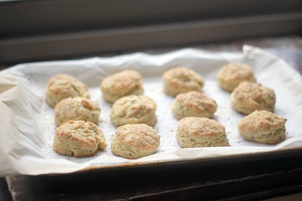 fresh-baked-biscuits