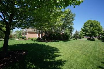 Expansive Yard