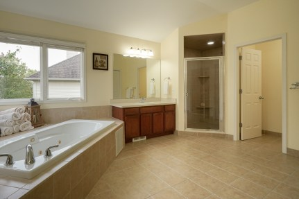 Tub, Shower, and WC