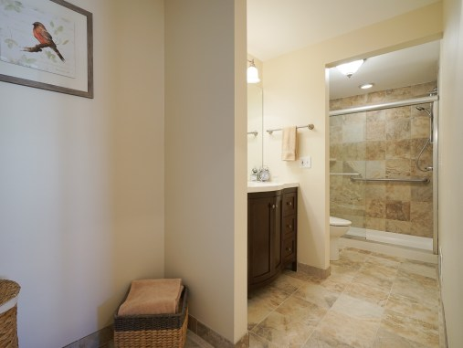 Master Bath - renovation 2015