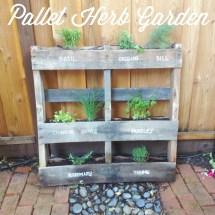 Pallet Herb Garden Baker' Jar
