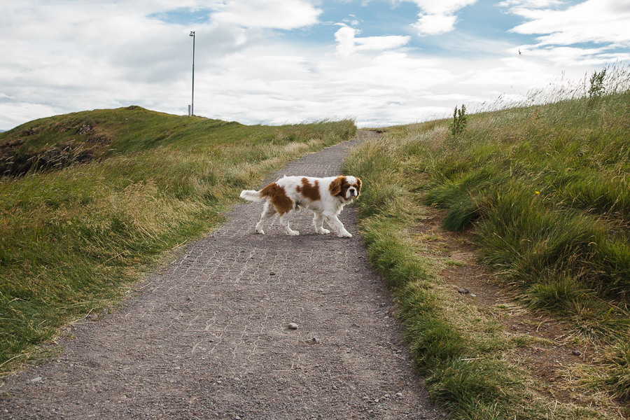 Snæfellsnes-Peninsula-143 Driving the Snæfellsnes Peninsula Our Life Travel