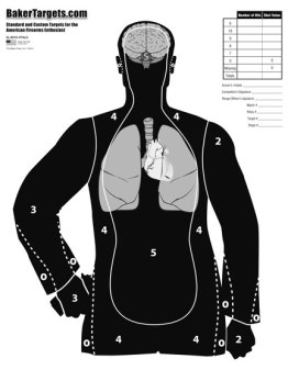 b21e target-w/ vital organs