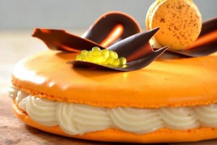 מגה מקרון תפוזים