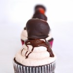 Chocolate Cupcakes With Strawberries Buttercream and Chocolate Covered Strawberries