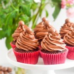 Hot Chocolate Malt Cupcakes
