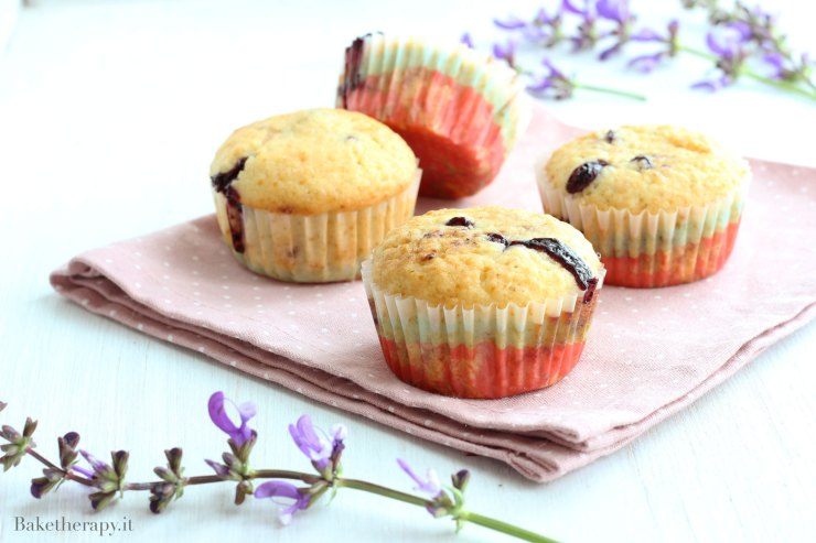 Muffin ai mirtilli e avena