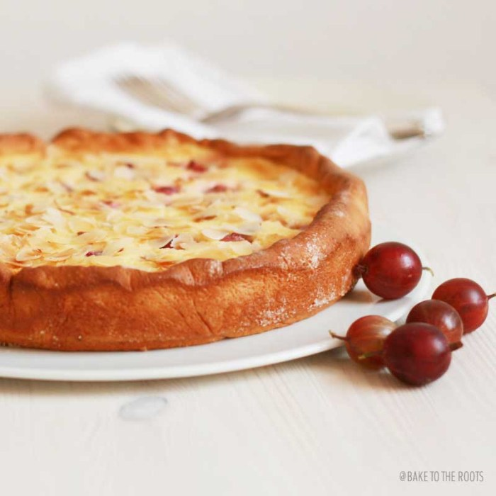 Rustic Gooseberry Cheesecake | Bake to the roots
