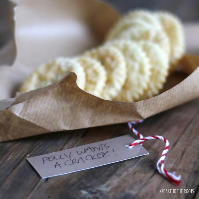Saltine Cracker | Bake to the roots