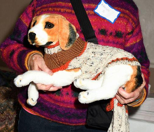 Dog Sweater (self-designed)