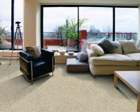 carpet outlet plus adrian mi  Floor Matttroy