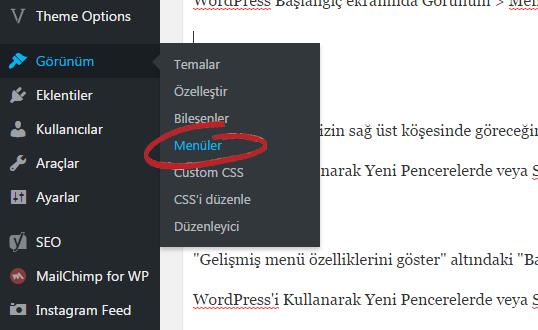 WordPress Menü Bağlantıları Yeni Pencerede Sekmede Açma