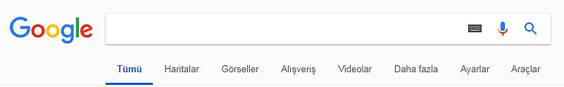 Google Arama Motoru