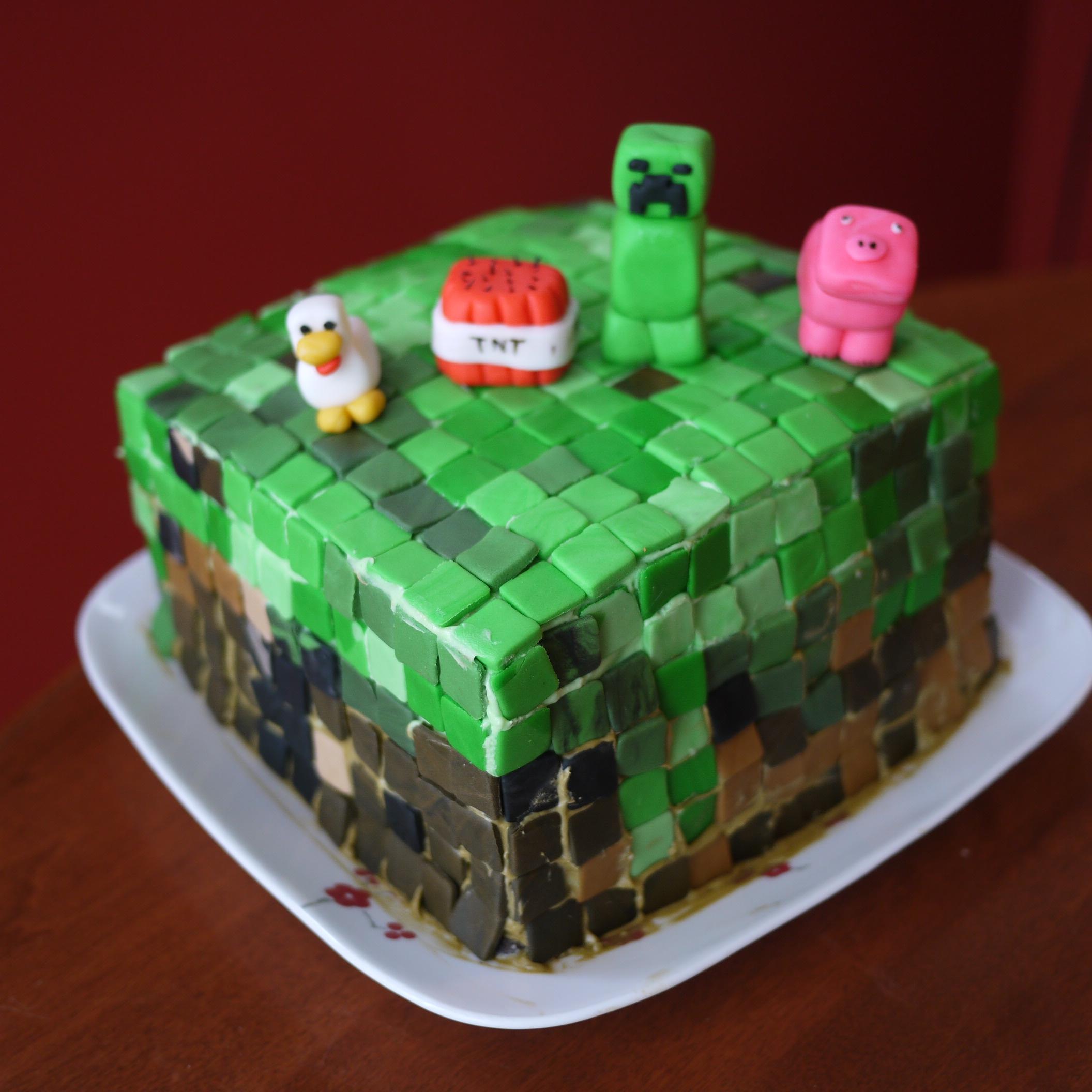 Minecraft cake and give aways – Baking Cake