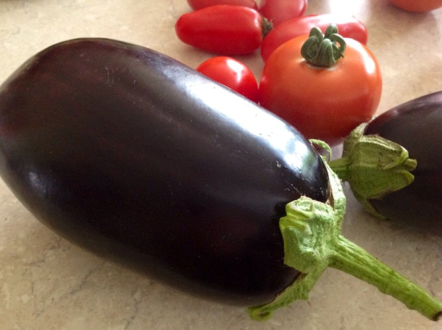 Allotment aubergines