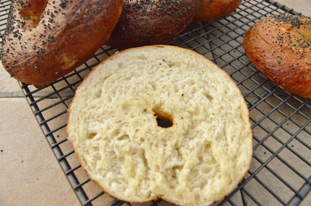 onion bagels: chewy interior