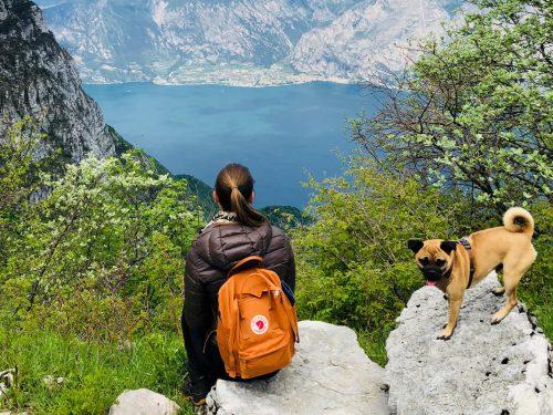 Gardasee mit Hund. Italien-urlaub mit Hund
