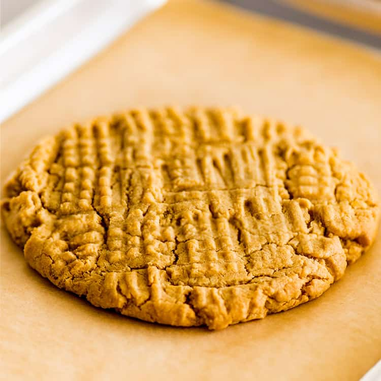 one peanut butter cookie