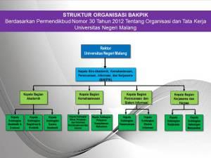 Struktur BAKPIK 2015