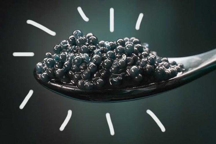 Have You Met Caviar?
