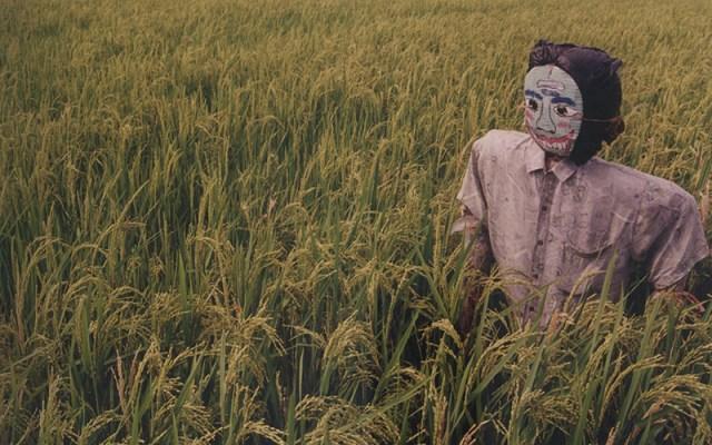 Makanan, Racun dan Ekonomi Politik