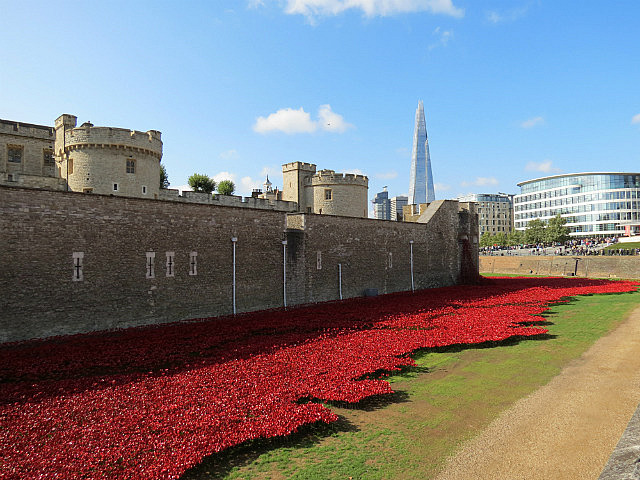 11.1411261969.poppies-at-london-tower