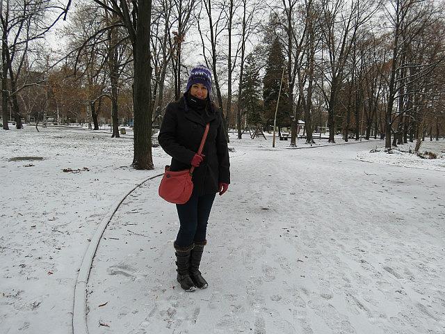 7.1355936416.snow-on-the-ground