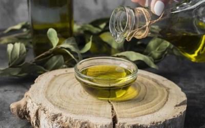 AOVE: qué es y cómo se cultiva el olivo para su producción