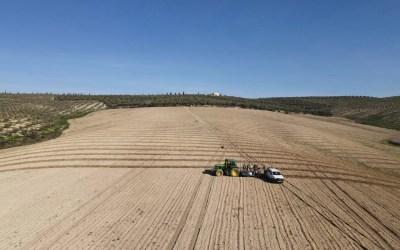 Maquinaria para la plantación de olivos