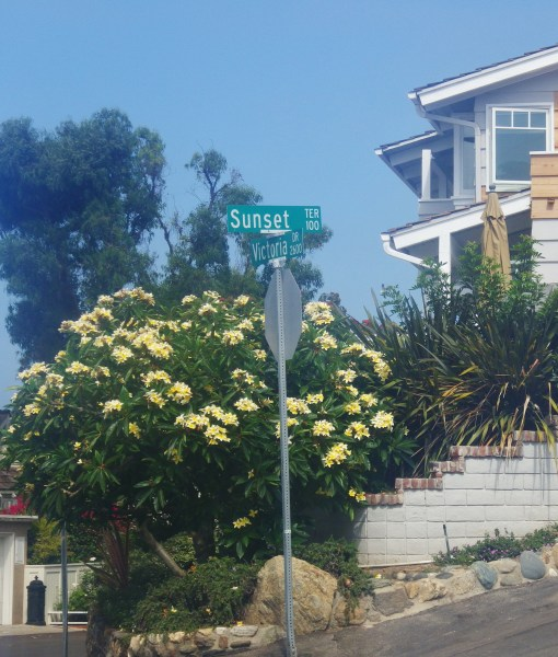 neighborhood near pirate tower