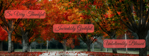 thankfulness cover photo