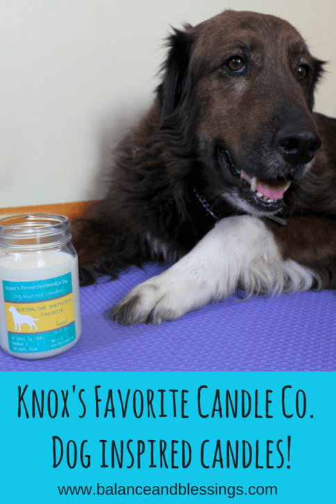 Spring 2018 affiliate Knox's Favorite Candle Co. Dog inspired candles!