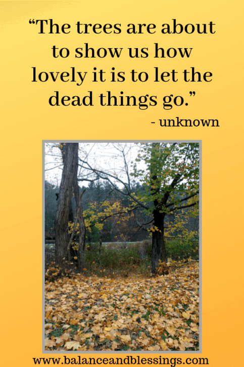 let the dead things go quote