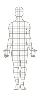 A computer generated image of a person is shown with a grid dividing the various parts of their body in palm sized sections.