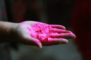 An image shows a hand holding pink Holi paint for the Hindu festival of Holi.