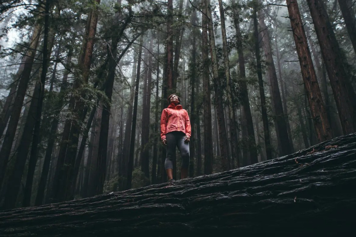 A woman is pictured standing on top of a fallen log in a vast and dense forest. She is looking into the woods with awe as she is reaping the benefits of unplugging in nature.