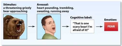 An image shows the four step process of emotional reaction. Stimuli leads to Arousal which leads to Cognitive label which leads to an emotional reaction.